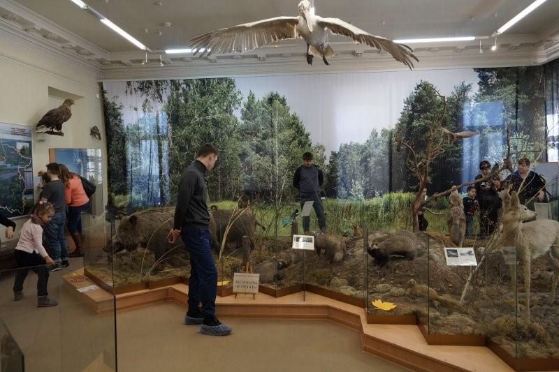 Выставка «Окно в природу» в Музее Словцова, Тюмень